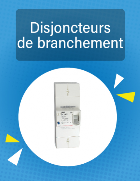 Disjoncteurs de branchement 500 mA