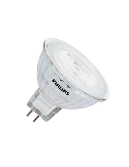Ampoules LED GU5.3/MR16 12V